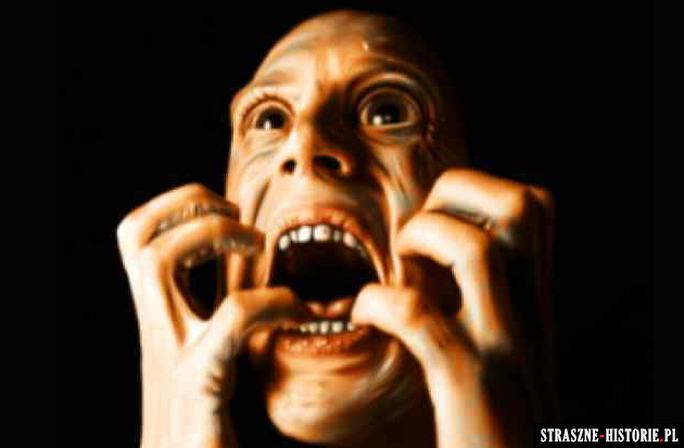 25 faktów, które sprawią, że przestaniesz się bać