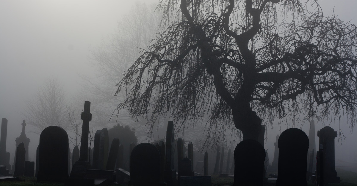7 pomysłów na niecodzienny pogrzeb. Co może stać się z nami po śmierci?