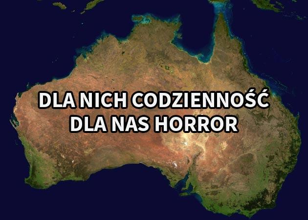 Zdjęcia, które sprawią, że odechce Ci się wyjazdu do Australii
